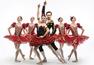 Санкт-Петербургский театр — Балет Дон Кихот